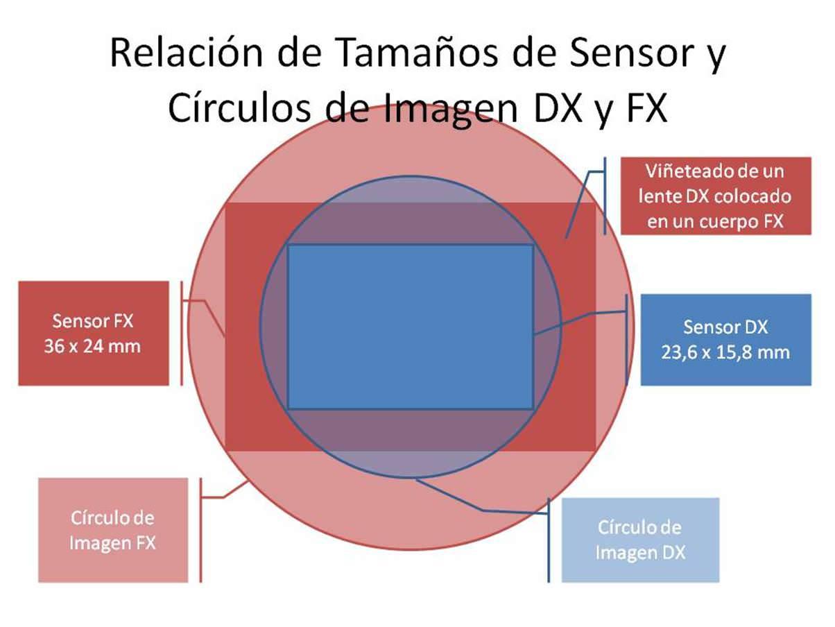 Sensores DX vs FX